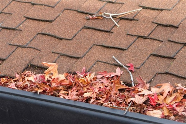 How to Maintain Your Rain Gutters